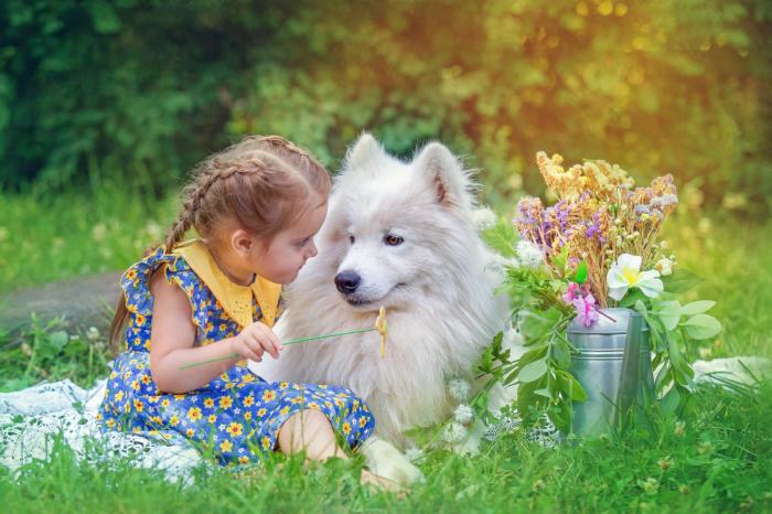 Очень трогательный и доверительный взгляд между девочкой и огромным псом. Автор фотографии: Екатерина Савёлова.