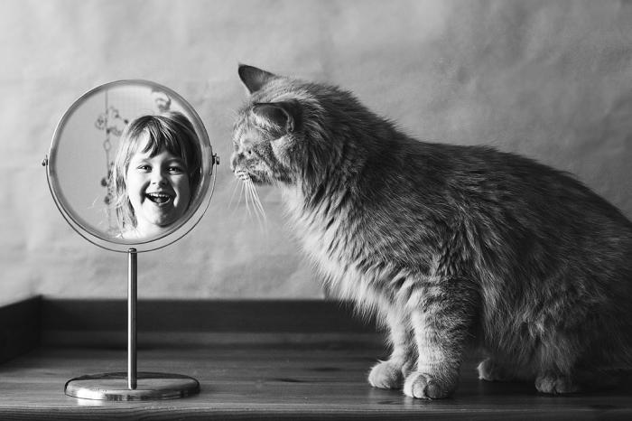 Весело и любопытно... Автор фотографии: Елена Николенко.