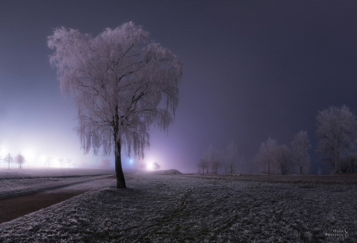 Магия туманного Петербурга.