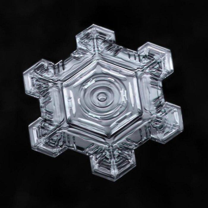 Вся эта уникальная работа вошла в  книгу «Небесные кристаллы: Раскрытие загадок снежинок» (Sky Crystals: Unraveling the Mysteries of Snowflakes).