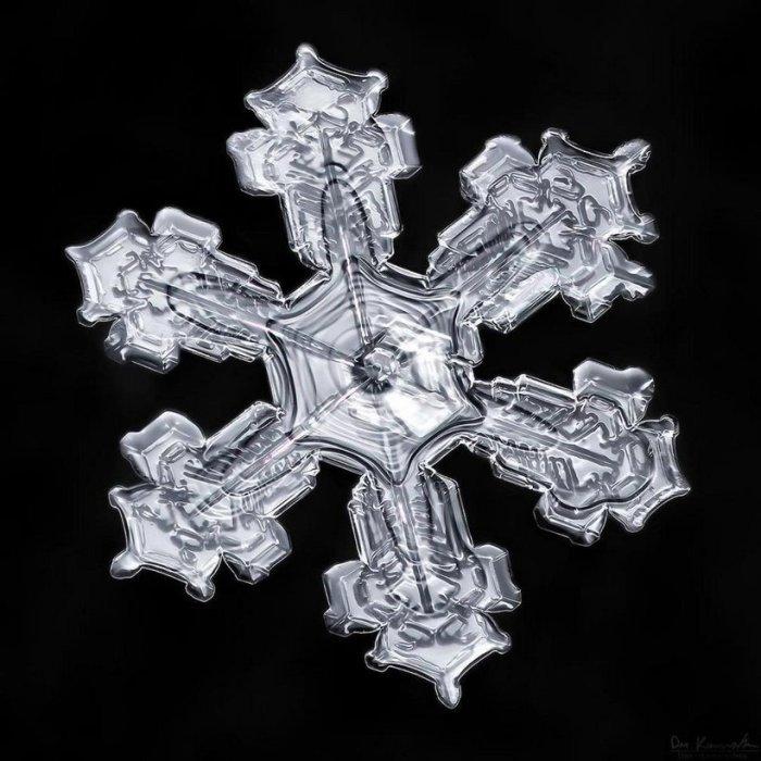 На создание таких снимков Дона Комаречка вдохновила зима.