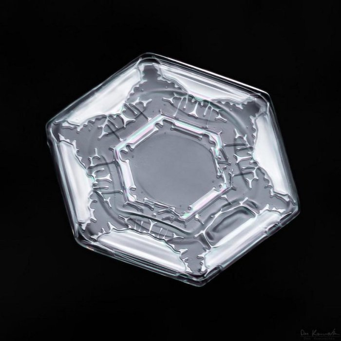 Хрупкая снежинка с помощью фотоаппарата превратилась на огромный кристалл со сложной структурой и уникальной формой.