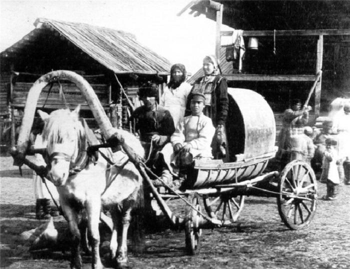 Кучер вместе с женихом и невестой позирует в свадебной повозке, запряженной небольшой белой лошадкой.