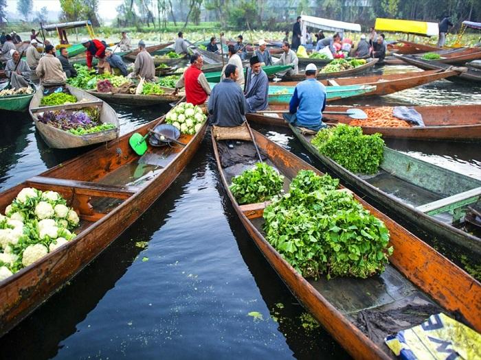 Продавцы на рынке озера Дал, на своих Шикарах сходятся в середине озера, чтобы поговорить о делах.