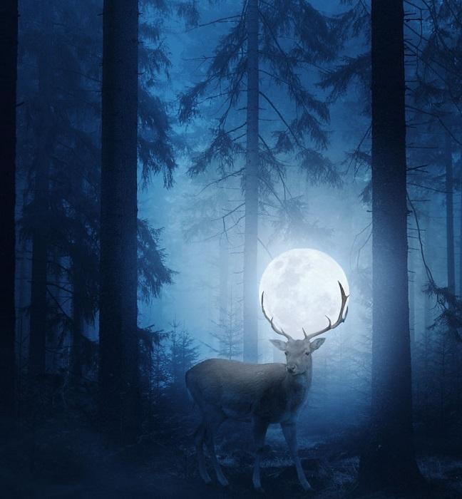Атмосферная работа с величественным волшебным оленем – властелином и хранителем необыкновенного сказочного леса.