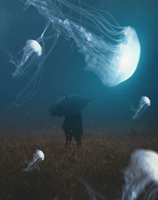 Осенний туманный день – самое лучшее время для грациозных танцев удивительных медуз над дикими травами.