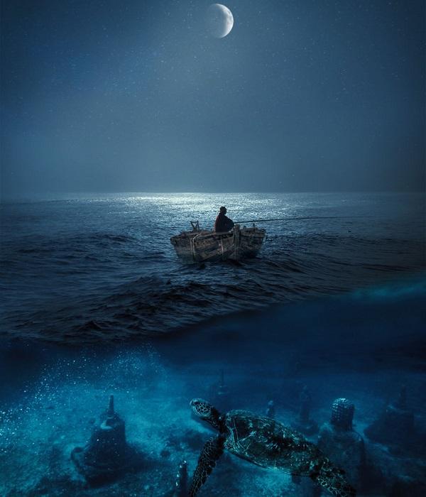 Под толщей океанских вод скрывается загадочный и невероятно особенный мир, полный удивительных существ и неразгаданных тайн.