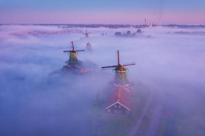 Ветряные мельницы в тумане.