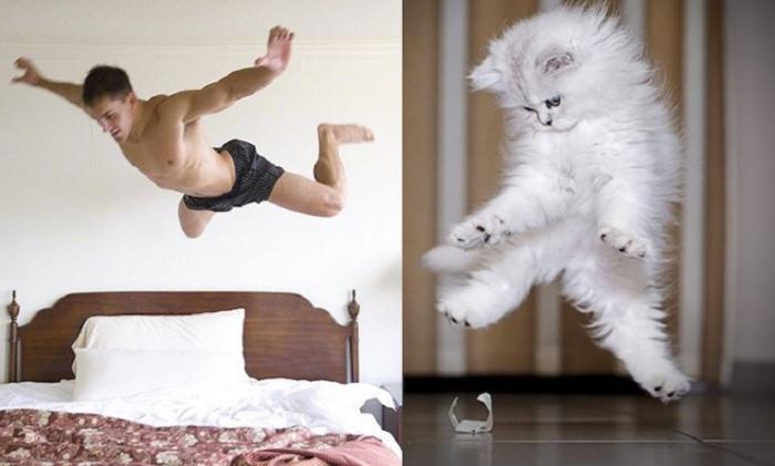 Уморительный снимок в момент прыжка.