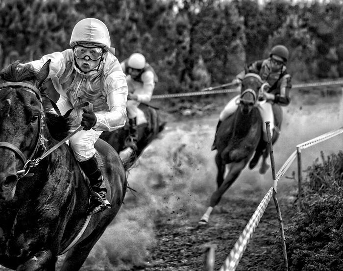 2-е место занял испанский фотограф Адольфо Энрикес Кало (Adolfo Enriquez Calo), запечатлевший любительские скачки в Монте-Энкса (Испания).