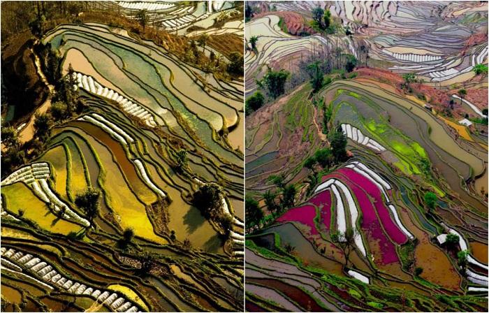 Изобретательный народ хани провел оросительную сеть на искусственные рисовые террасы.