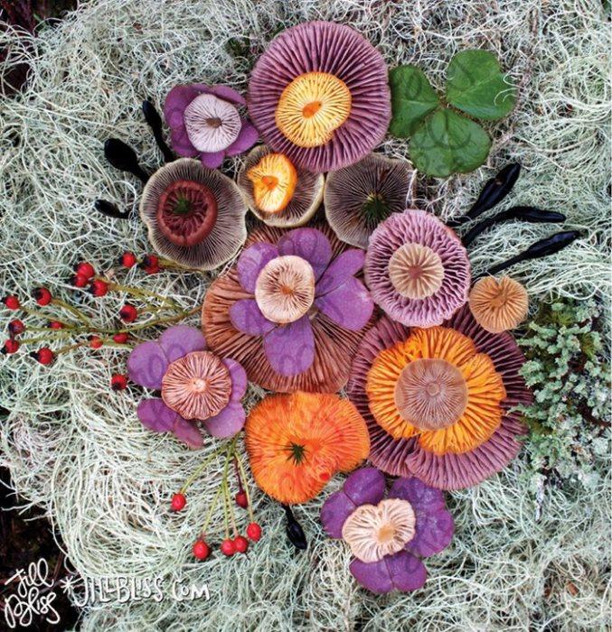 Иногда свои грибные натюрморты художница дополняет веточками с ягодами, листьями и цветами.