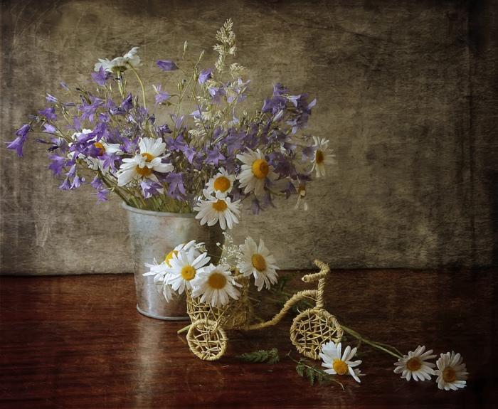 Полевые цветы. Автор фотографии: button.