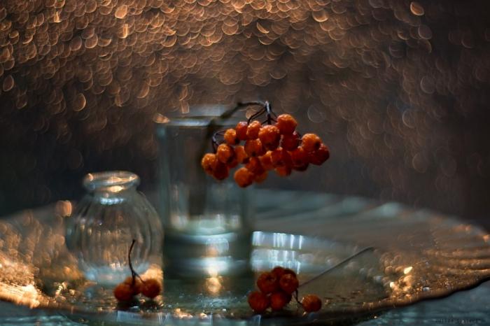 В лучах заката. Автор фотографии: Юлия Густерина.