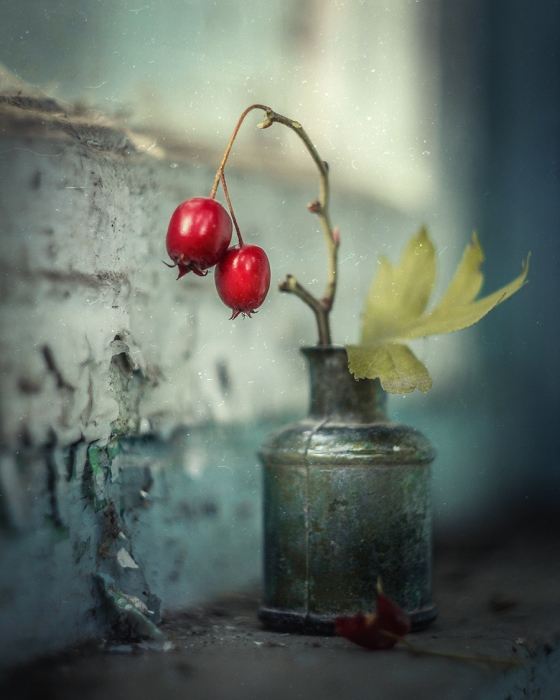 Очередной осенний денёк. Автор фотографии: Svoboda.