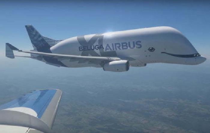Веселый самолет «BelugaXL» с голубыми глазами и улыбающимся ртом, как у кита.
