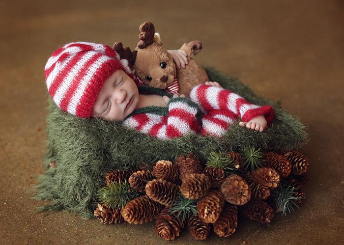 Сладкий сон в еловом лесу.