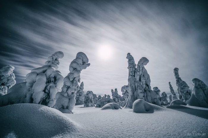 Снежные статуи замерли под белоснежными шапками.