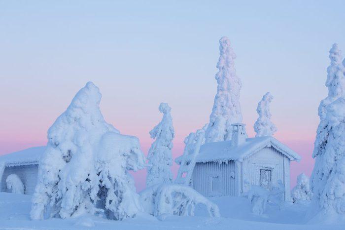 Выпавший за ночь снег облепил все вокруг.