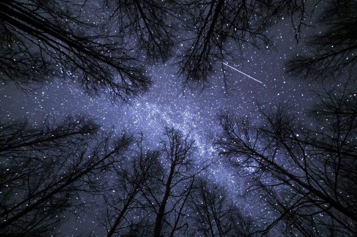 Небесные светила ярко светят и привлекают взор человека.