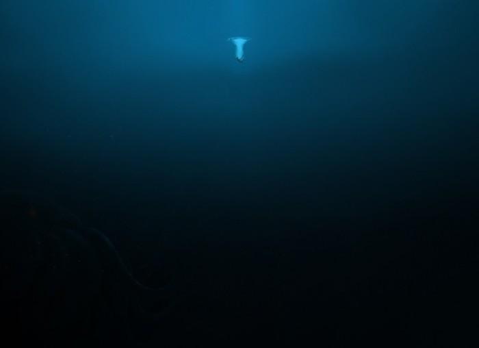 Тайны океанских глубин.