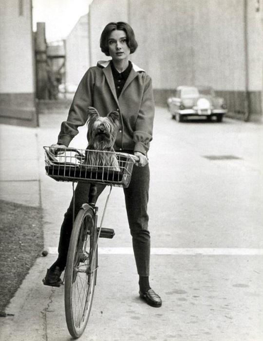 Величайшая актриса американского кино, признанная икона киноиндустрии и стиля. /Фото: yaplakal.com