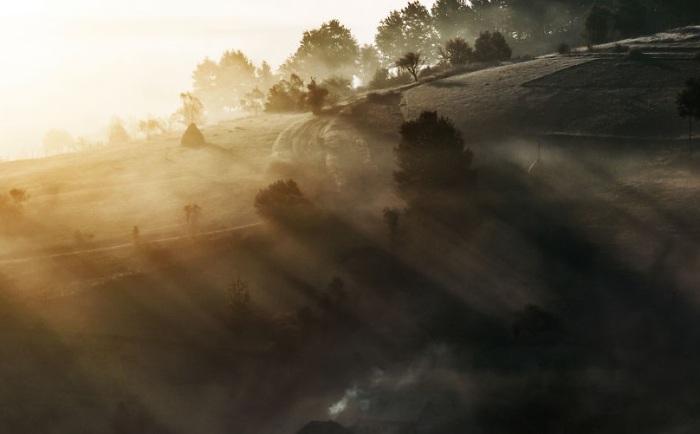Силуэты деревьев стоят, как великаны, которые охраняют территорию холмов.