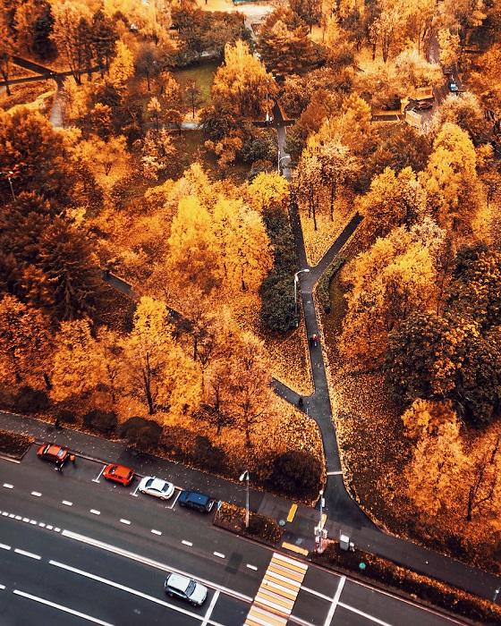 Вид с высоты на золотисто-рыжий осенний городской парк.