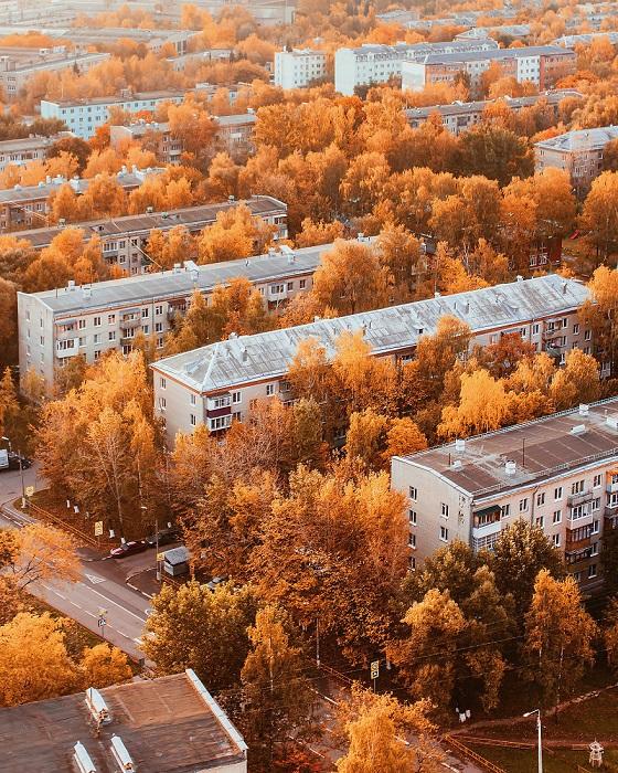 Золотые деревья среди московских пятиэтажек.