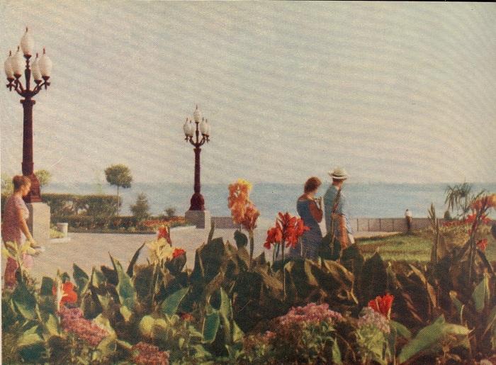 Жители города прогуливаются по Набережной города.
