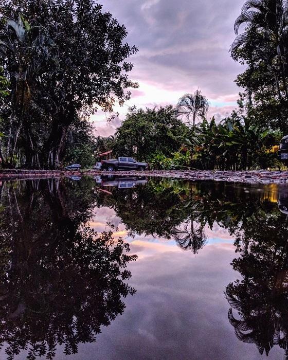 Фотограф из Канады очень любит прогуливаться после дождя – именно тогда у него открывается множество возможностей для создания «отраженных» снимков.