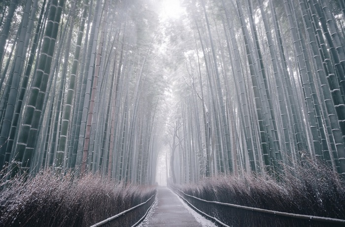 Киото, Япония. Фотограф Takashi Yasui.