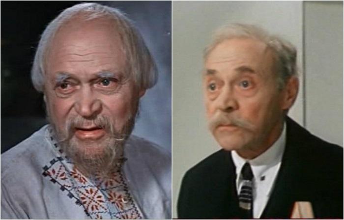 Блистательный острохарактерный актёр, герой многих киносказок, снимался в комедийных ролях, создал целую галерею образов русской классики в театре и кино.