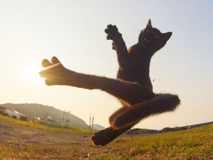 Сильный прыжок, точный удар!
