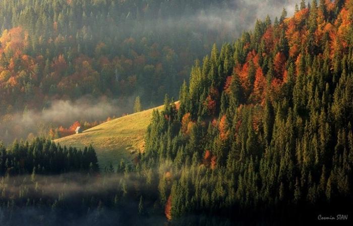 Часть Карпат на западе Румынии. Фотограф: Stan Cosmin Ovidiu.