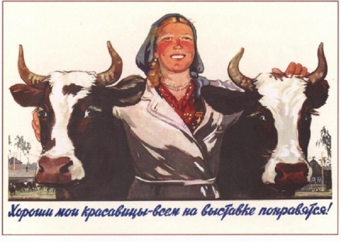 Художник плаката: Савостюк О., Успенский Б., 1955 год.