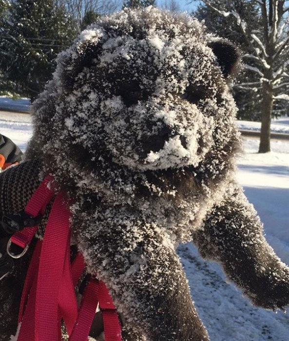 Утро,доброе такое,снежное...