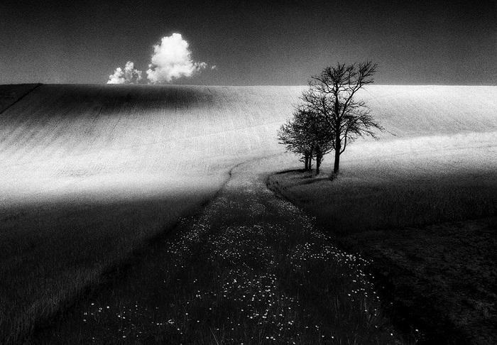 Автор фотографии: Стефано Чиол.