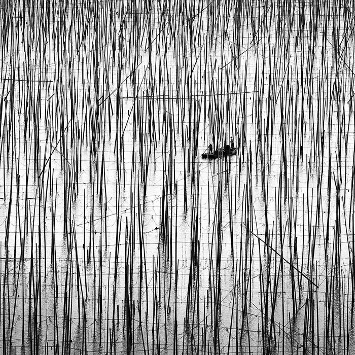 Автор фотографии: Александр Мануэль.