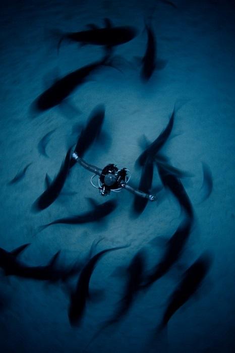 Третьим в категории «Широкий угол» стал китайский фотограф Фен Пинг (Fan Ping).