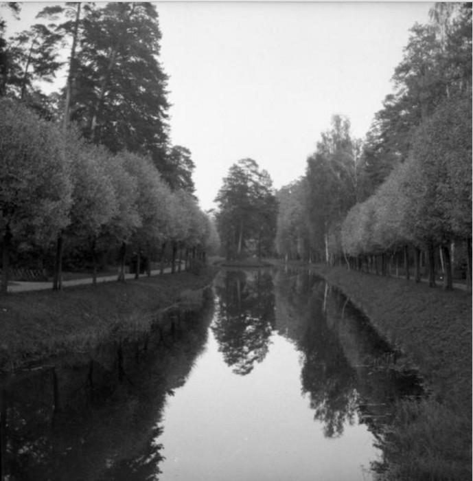 Цепочка из шести прудов на территории парка Сокольники.
