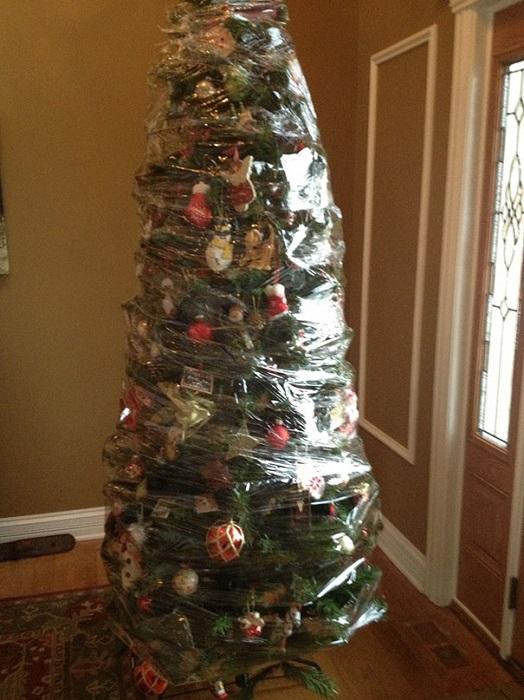 Рождественская елка, которую обмотали пищевой пленкой для защиты от кошек.