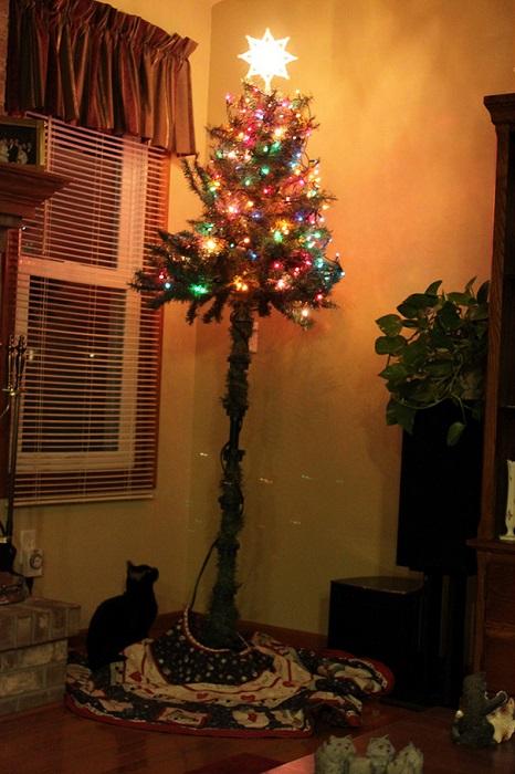 На какие только ухищрения не идут хозяева кошек, чтобы защитить рождественскую елку от своих питомцев.