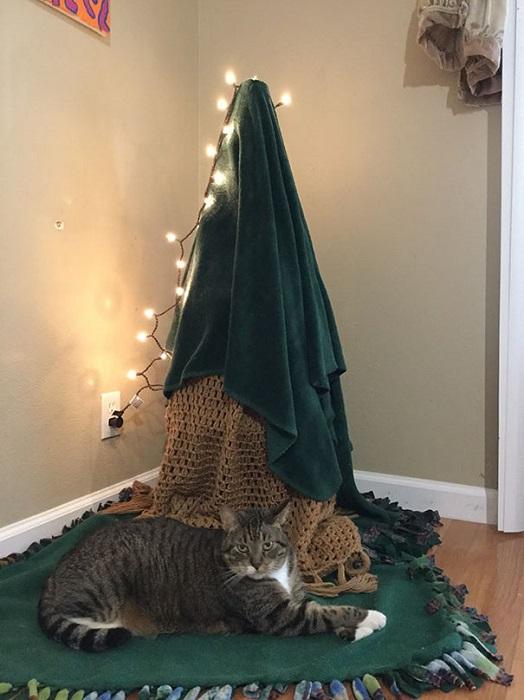 «Перевернутую корзину я накрыл пледом и полотенцем, но мой кот остался недоволен – ведь ему придется провести праздник без привычных елочных развлечений».