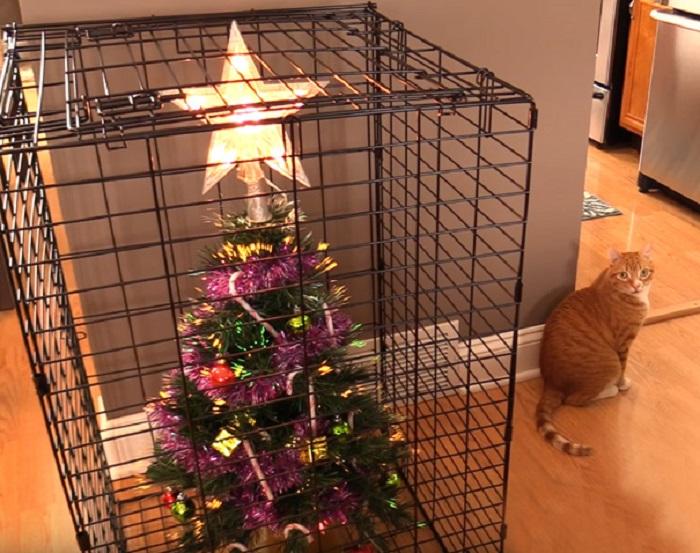 Рождественская клетка для рождественской елочки.