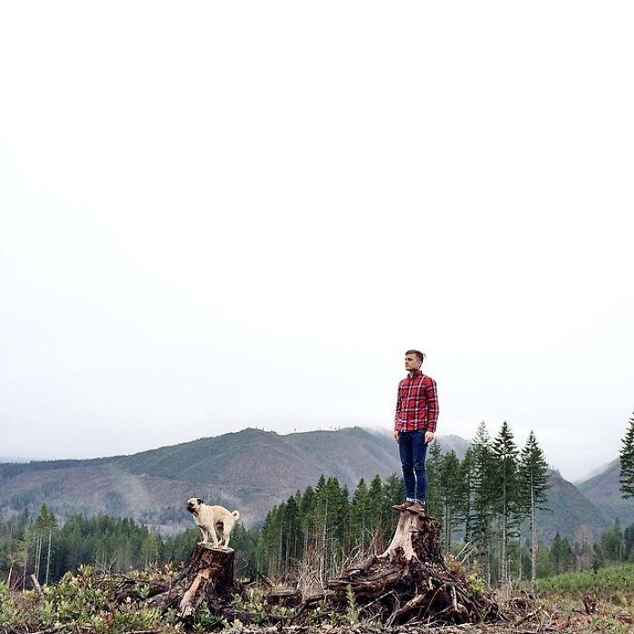 Джереми и мопс осматривают местность, взобравшись на пеньки.