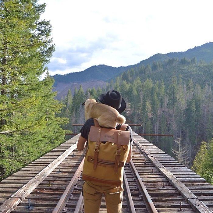 Друзья путешествуют по стране налегке.
