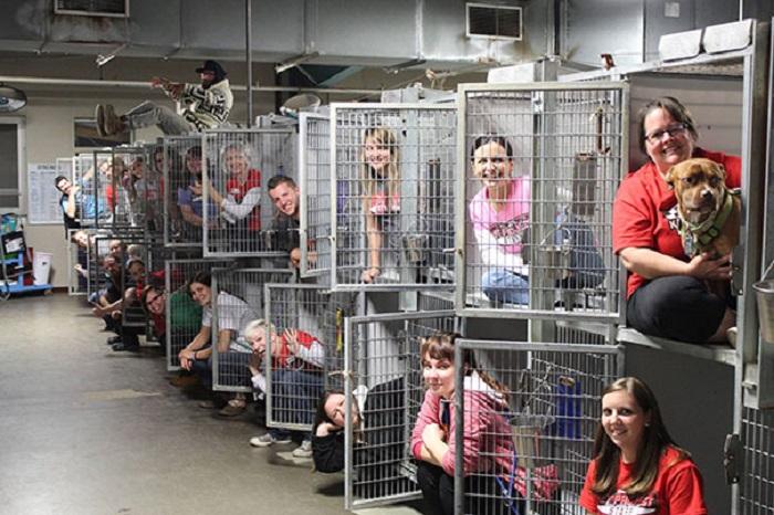 В день открытых дверей волонтёры раздали всех животных.