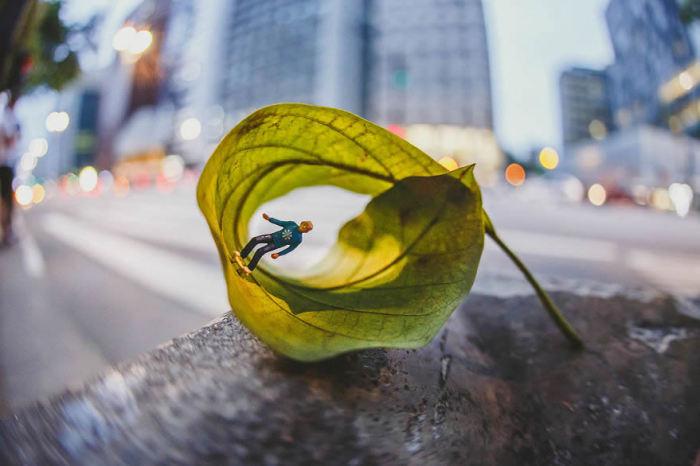 Жизнь в миниатюре: Фотограф снимает яркие сюжеты о крошечных людях.