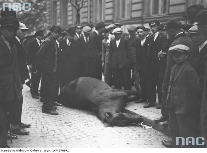 Группа прохожих на улице глазеющих на мертвую лошадь.